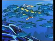 فيكي الفايكنج الحلقة 60