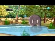 قصص الحيوان في القرآن الحلقة 29