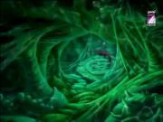 بحيرة الشبوط الحلقة 23