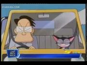 كورو القط الأسود الحلقة 7