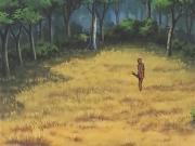 زهرة البراري الحلقة 31